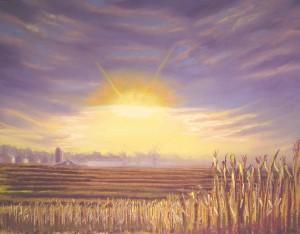 fallow-fields