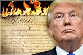 trump:constitution